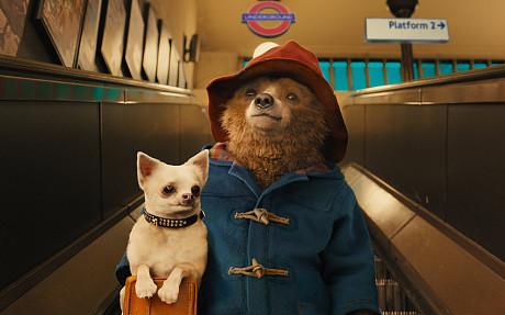 Paddington Bear (2/6)